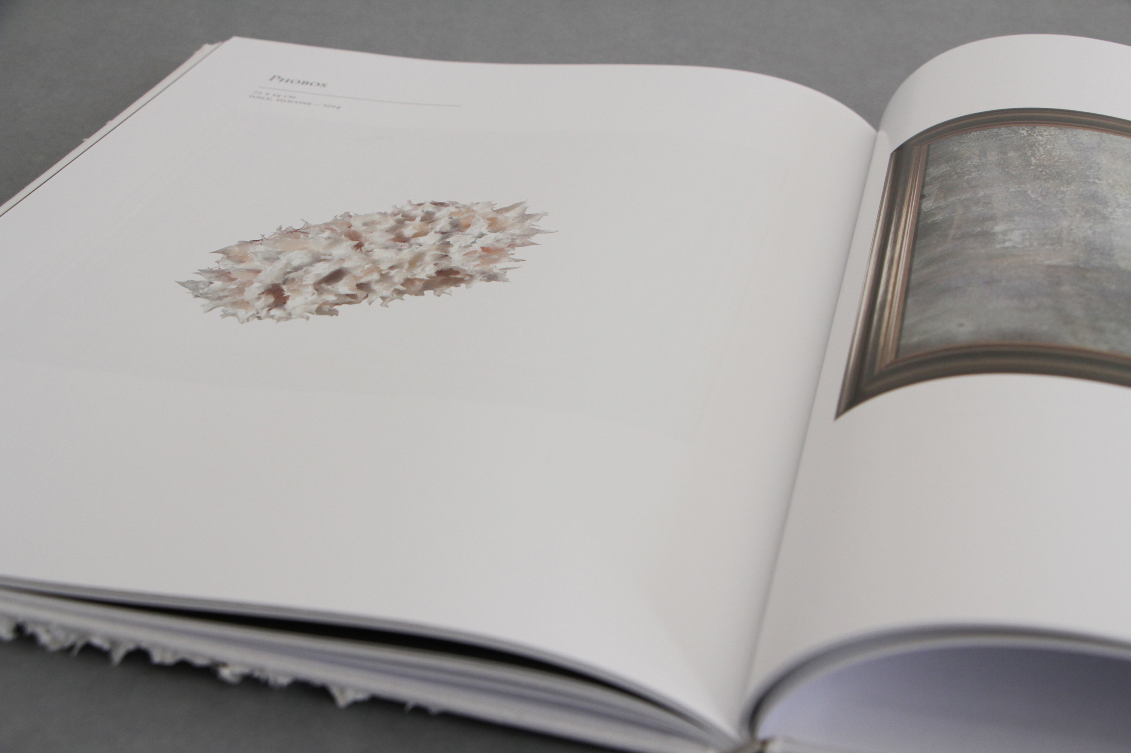 Diego Pagin — Livre d'artiste